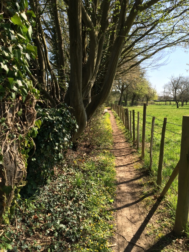 an unfamiliar path to walk